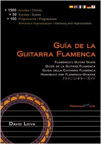 Flamenco´s guitar guide - David Leiva