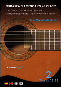 Guitarra flamenca en 48 Clases - vol2